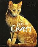 """Afficher """"Au pays des chats"""""""