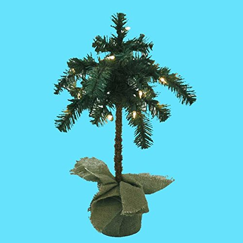 Palm Tree Lighting front-424108