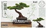 BON-02 1/12 ザ・盆栽 プラスチックモデルキット -弐-
