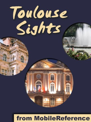 Toulouse Sights: a travel guide to the top 30 attractions in Toulouse, France (Mobi Sights)