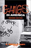 img - for Gangs in America book / textbook / text book