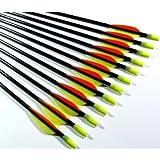 "6 Shiny Black ® Fiberglass Target Practice Arrows 30"""