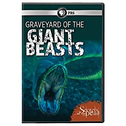 Secrets of the Dead: Graveyard of the Giant Beasts DVD