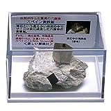 あなたも!鉱物博士シリーズ ケース標本 サイコロ状黄鉄鉱