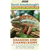 David Attenborough's World of Wildlife Vol. 11 - Dragons and Chameleons [VHS]by David Attenborough