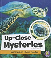 Up-Close Mysteries: Zoomed-In Photo Puzzles (A+ Books)