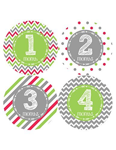 Months in Motion 386 Monthly Baby Stickers Gender Neutral Milestone Sticker