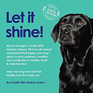 Premium Wild Alaskan Salmon Oil for Dogs - Best Omega 3 Fish Oil Supplements for Dogs - For a Healthy Shiny Coat - Prevents Itchy Skin, Skin Allergies & Shedding - 1000mg - 120 Softgel Capsules by NuLife Natural Pet Health