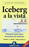 Iceberg a la vista: Principios para tomar decisiones sin hundirse (Gestión del conocimiento)