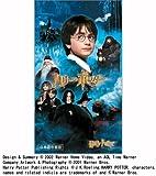 ハリー・ポッターと賢者の石 (吹替版) [VHS]
