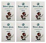 Auroshikha Nature's Garden Incense Cones - AMBER (120 cones ) - Set of 6
