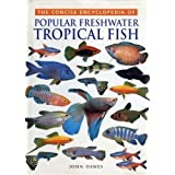 Concise Encyclopedia of Popular Freshwater Tropical Fishby John Dawes