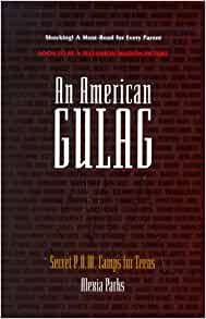 Amazon.com: An American GULAG : Secret P.O.W. Camps for ...