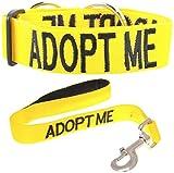 """«Adopter ME"""" Couleur Jaune Coded Nylon Grand L-XL Semi-Choke collier de chien et de luxe rembourré poignée 60cm Laisse Short Set (New domicile nécessaires) Faire un don à votre organisme local!..."""