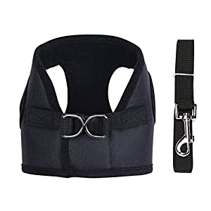 Happy Hours - Adjustable Soft Mesh Canvas Non Pulling Tugging or Choking Puppy Harness Vest Leash Set Dog Walking Control Pet Cat Lead Rope D-ring Hasp Buckle, 5 Colors 3 Sizes Available