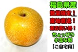 数量限定! 福島県産 産地直送! 超お買い得! ちょっぴり小玉な梨 2kg ご自宅用