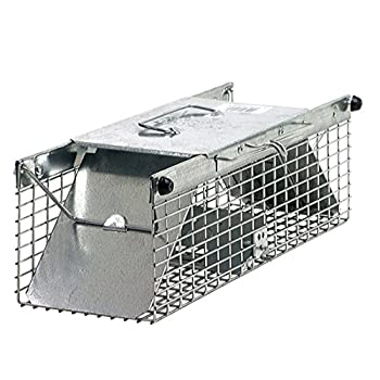 Havahart 1025 Live Animal Two-Door Chipmunk, Small Squirrel, Rat, and Weasel Cage Trap-Made in the USA