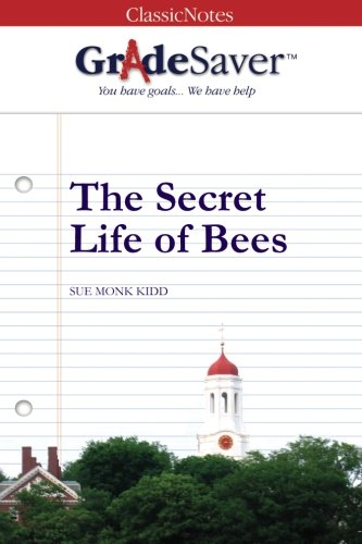 the secret life of bees essay The secret life of bees takes place around 1964, a time of strong racism as the african-americans fight for civil rights the story begins in.
