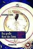 Das große Meer des Sinns: Hermenautische Erkundungen in Dantes Commedia