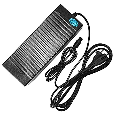 Premium Universal Charger for Hoverboard Two Wheel Self Balancing Scooter