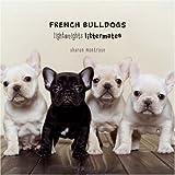 French Bulldogs (Lightweights Littermates)