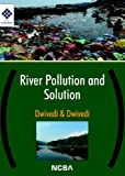 River Pollution and Solution