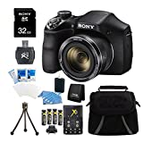Sony DSC-H300 Digital Camera Bundle with Bag, Tripod and Accessories, Black (16 Items)