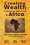 img - for Creating Wealth by Harnessing Opportunities in Africa: God's Way to Multiply the Assets in Your Storehouses book / textbook / text book
