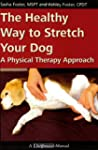 The Healthy Way to Stretch Your Dog -...