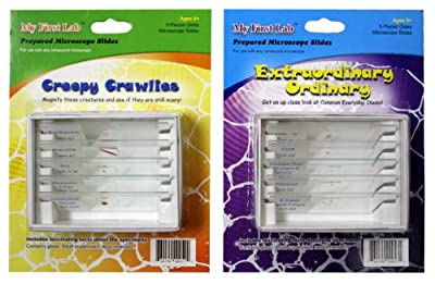 My First Lab Prepared Slide Set Combo Pack - Creepy Crawlies & Extraordinary Ordinary from C & A Scientific
