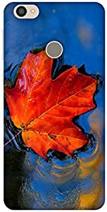 The Racoon Grip Maple hard plastic printed back case / cover for Letv Le 1s