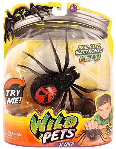Wild Pets Spider - Creepster - 1