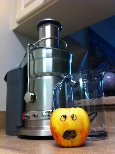 Why Should You Buy Breville 800JEXL Juice Fountain Elite 1000-Watt Juice Extractor Best ...