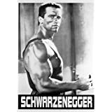 Posters: Arnold Schwarzenegger Poster - Muscles (36 x 25 inches)