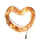 TaoTronics LED Starry String Lights, Firefly Lights, Copper Wire Lights (100 Leds, 33 ft,)