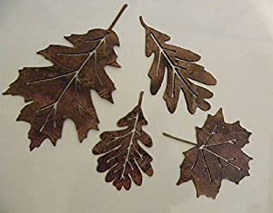metal wall art decor leaf accents set of 4 home kitchen. Black Bedroom Furniture Sets. Home Design Ideas