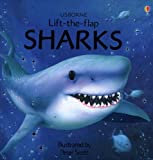 img - for Sharks (Usborne Lift-the-Flap Learners) book / textbook / text book