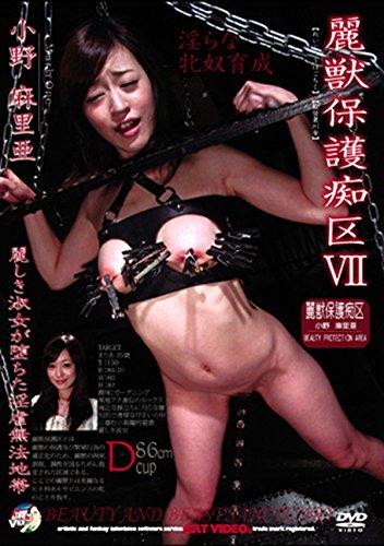 麗獣保護痴区VII [DVD]