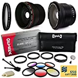 Professional Panoramic Macro Lens & Filters Accessories Bundle for Sony A3500, A7, A7R, A7S, A100, A200, A230, A290, A300, A330, A350, A380, A390, A450, A500, A550, A560, A580, A700, A850, A900, A33, A35, A37, A55, A57, A58, A65, A99, HX300 includes Super