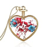 Cilver Fashion Dried Flowers Valentines Special Glass Heart Pendant Chain (Mixed)