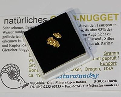 Natürliches Gold - Nugget ! ca. 0,5 Gramm schwer + über 8 mm groß (inclusive Mini-Nugget als Gewichtsausgleich) in Glasdeckel-Dose, Oregon, USA
