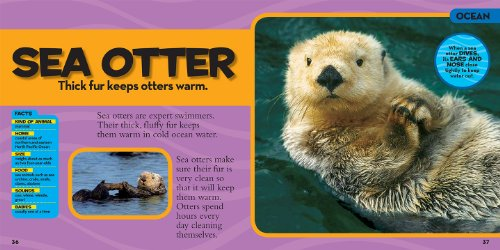 National-Geographic-Little-Kids-First-Big-Book-of-Animals-National-Geographic-Little-Kids-First-Big-Books