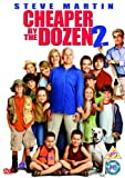 Cheaper by the Dozen 2 packshot