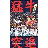 猛牛突進 パ・リーグ制覇 ~2001年 大阪近鉄バファローズ優勝への軌跡~ [VHS]