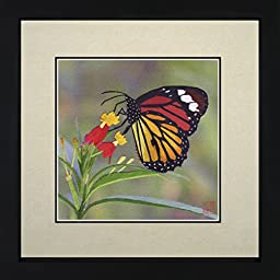 King Silk Art 100% Handmade Embroidery Colorful Butterfly on Flowers Chinese Print Framed Whildlife Butterfly Painting Gift Oriental Asian Wall Art Decoration Artwork Hanging Picture Gallery 33016WFB2