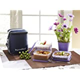 Director Special Lunch Box (Medium) With Insulated Bag