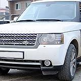 Trittbretter f�r Land Rover Discovery 4 ab Bj 09 mit T�V/ABE Bescheinigung (aus Aluminium) | Sidestep Seitenschweller Trittleisten