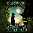A Spell of Trouble: Silver Hollow Paranormal Cozy Mystery Series, Book 1 Hörbuch von Leighann Dobbs, Traci Douglass Gesprochen von: Amy Rubinate
