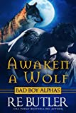 Awaken a Wolf (Wiccan-Were-Bear Book 9)