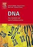 Image de DNA: Das Molekül und seine Funktionsweise